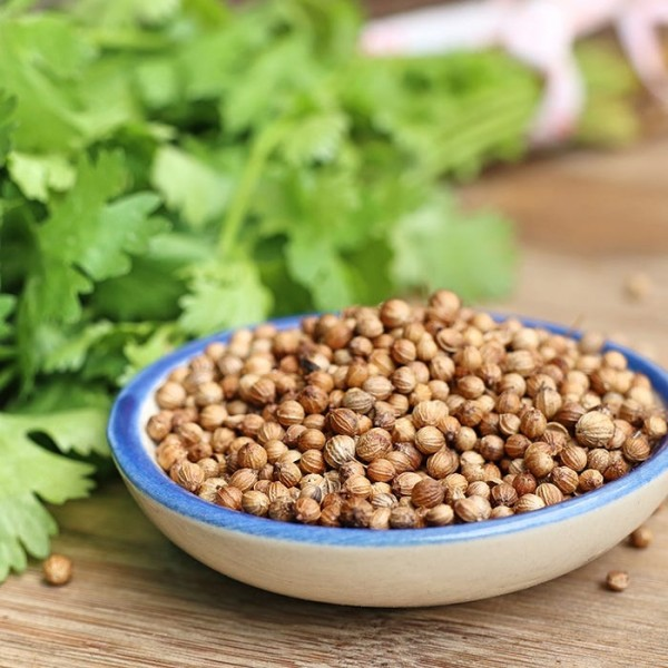 Naturally Treated Organic Coriander Seeds (20 Grms)