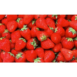Hydroponics strawberry nutrients for 500 liters capacity