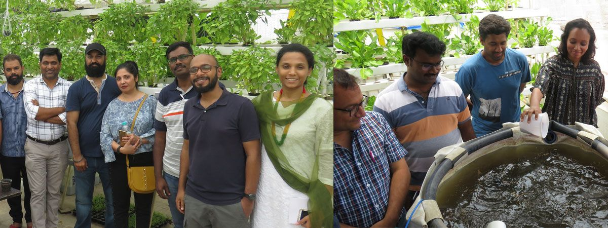 advanced aquaponic & hydroponic training in india